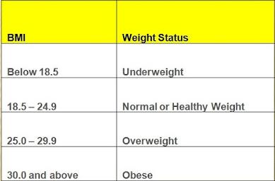 BMI Calculator, BMI Measures