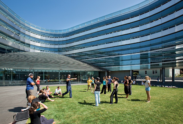 Lawn in front of the modern architecture building