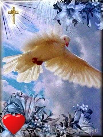 Roh Kudus Datanglah : kudus, datanglah, AKSARA, HIDUP:, Kudus, Datanglah