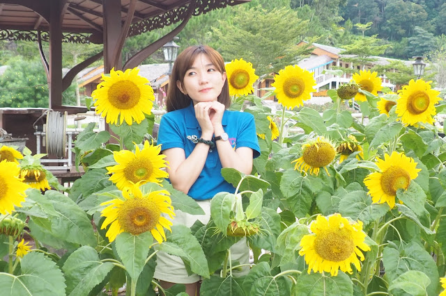 Thailand Betong Suan Mai Dok Flower Garden