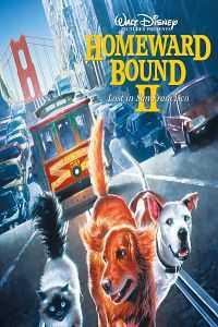 Download Homeward Bound II: Lost in San Francisco 1996 Tamil Dubbed Movie HDRip