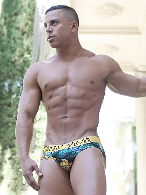 Danny Miami Regal Habitat Brief Underwear Actual Gayrado Online Shop