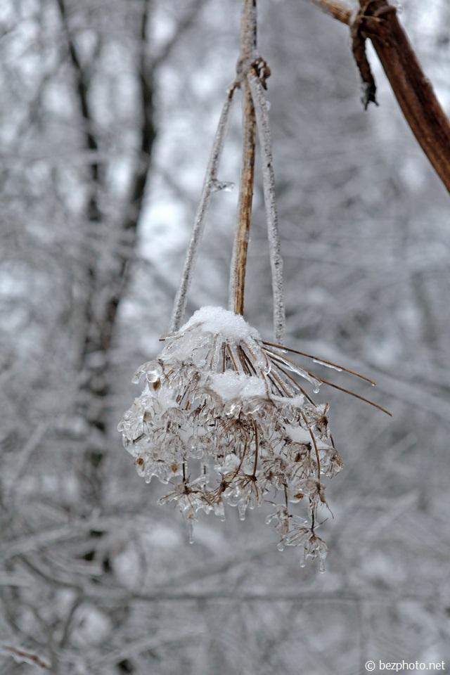 ледяной дождь в москве 2016