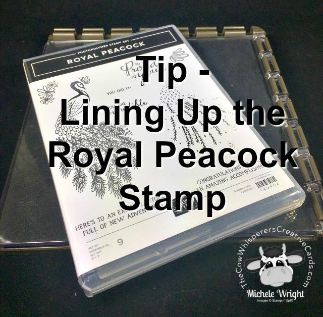 Tip, Royal Peacock, Lining Up, Stamparatus