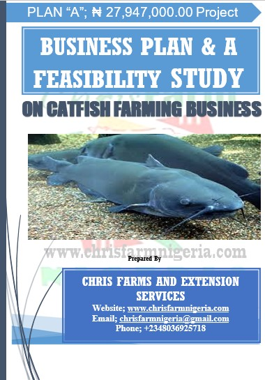 Lagos Epe Agribusiness Business Plans and Feasibility Study on Catfish Farming