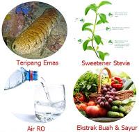 Obat Syaraf Kejepit Alami Di Apotik Herbal