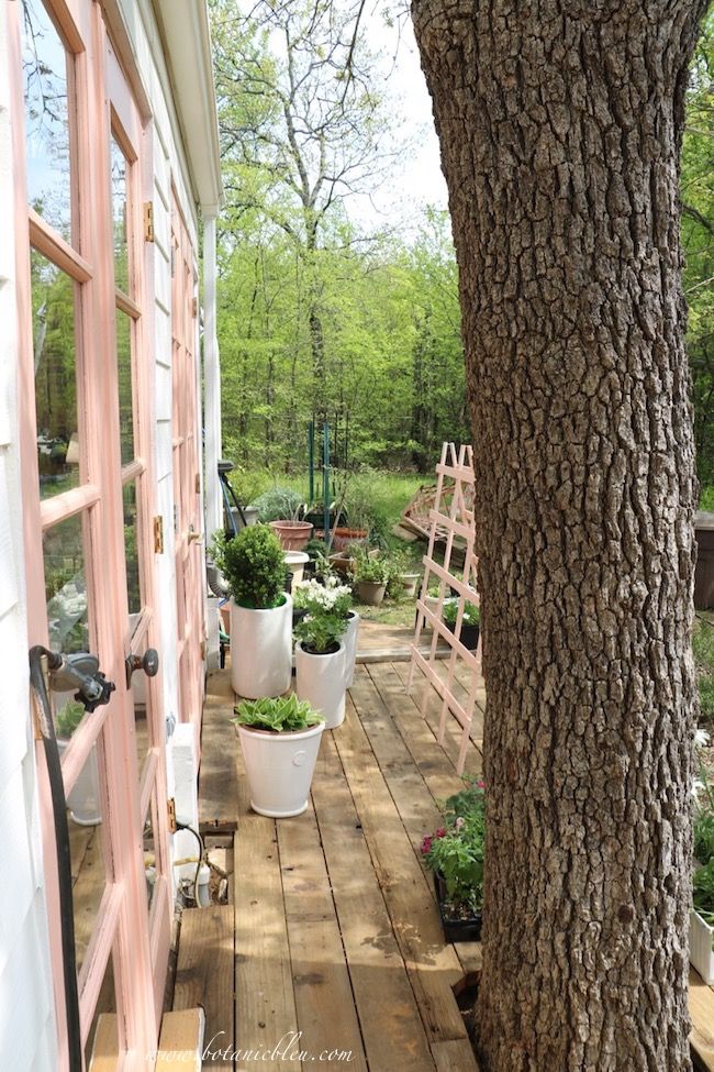 Peach greenhouse new deck leads to an open meadow surrounded by native woods