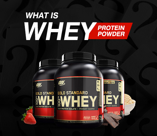 Whey Protein: Learn About the Basics and Types of Your favorite Protein Supplement