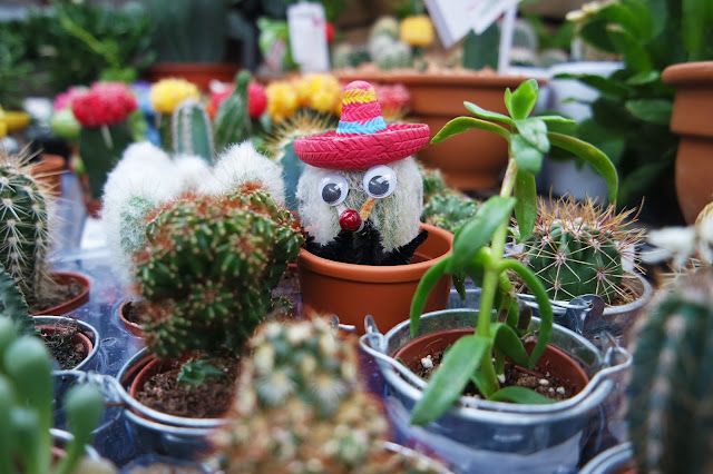cactus with sombrero and googly eyes