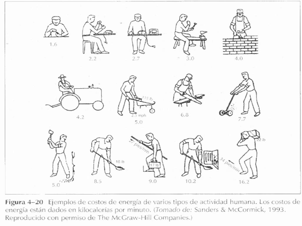 PrietoIngenieria: Diseño del Trabajo Manual
