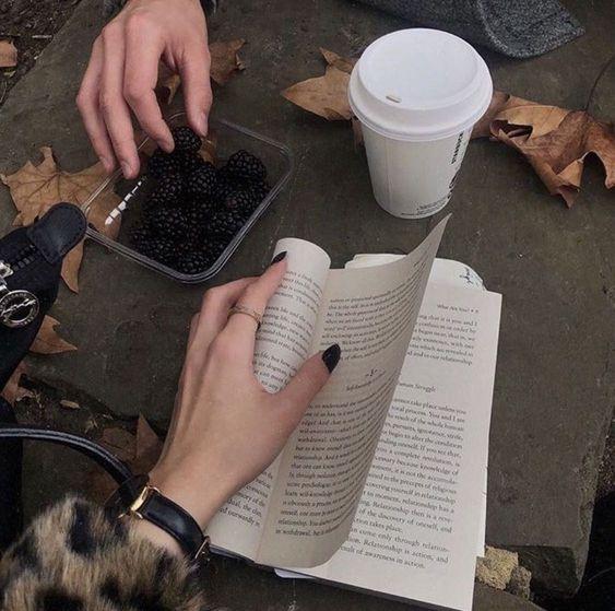 livros-lidos-agosto