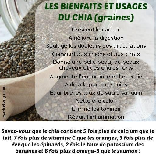 Nirvana sant les graines de chia - Graine de chia coupe faim ...