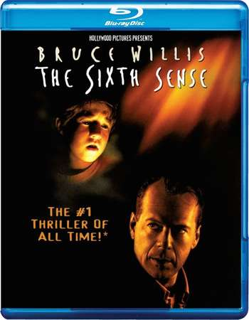 The Sixth Sense 1999 Dual Audio 720p BRRip [Hindi - English]