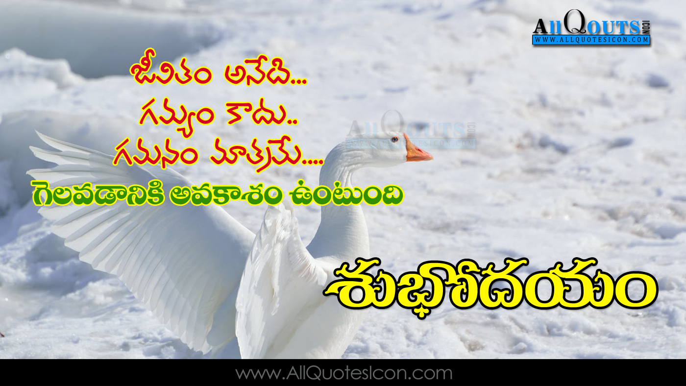 Beautiful Good Morning Quotes In Telugu Hd Wallpapers Best New Good
