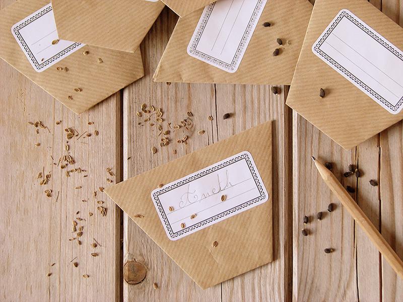 Enveloppes A Graines En Origami - Recettes Bio Et Fait-Maison - Le