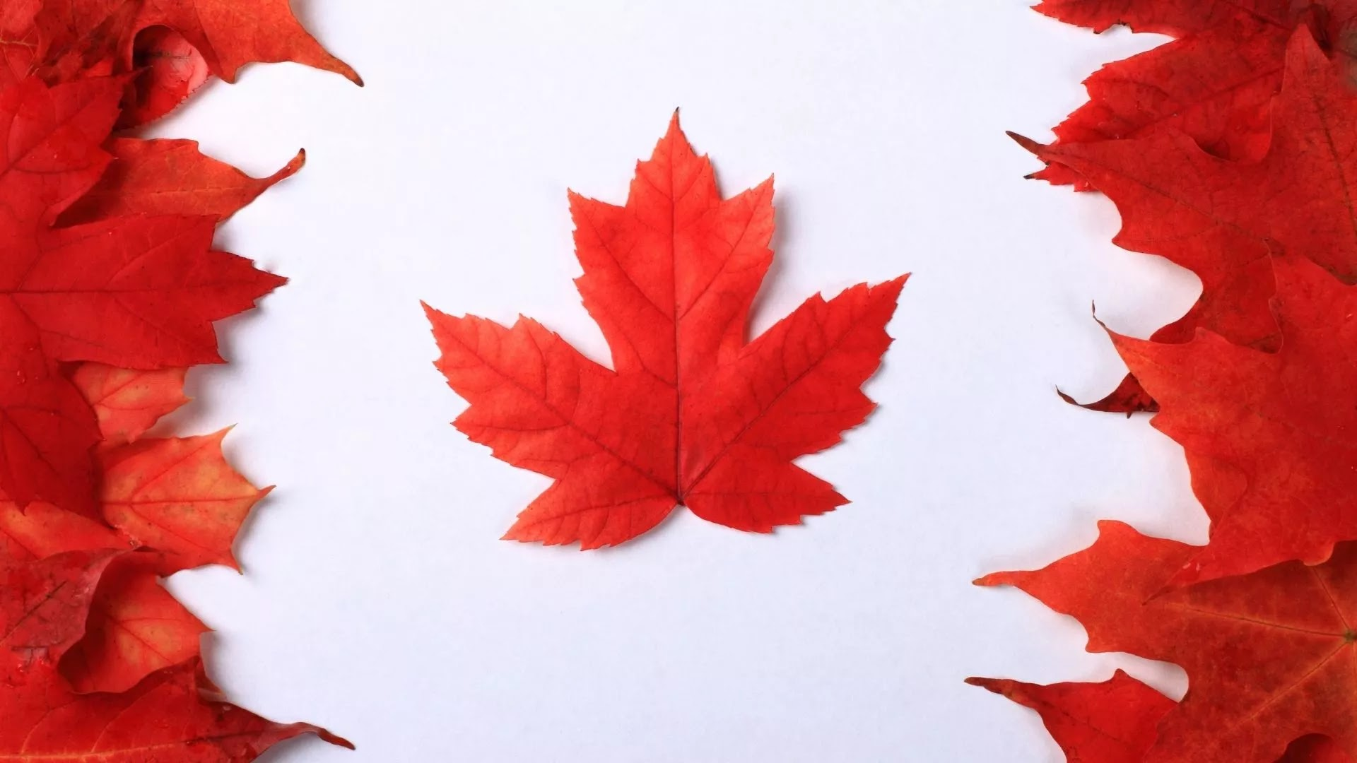 Canada flag full HD image download