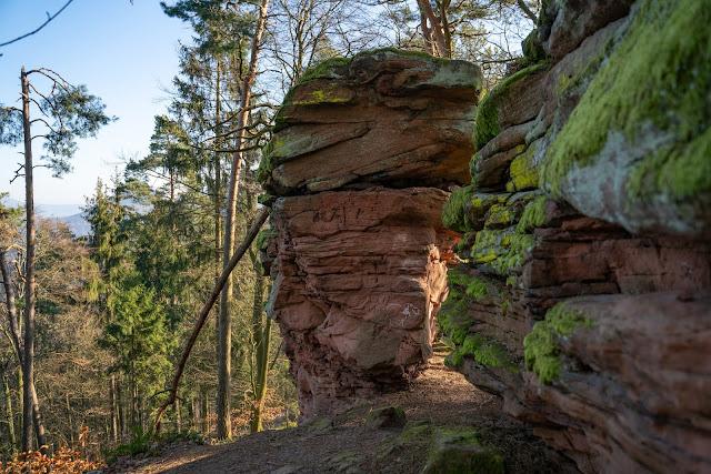Richard-Löwenherz-Weg  Annweiler am Trifels  Wandern Südliche Weinstraße  Wanderung Pfälzerwald 12