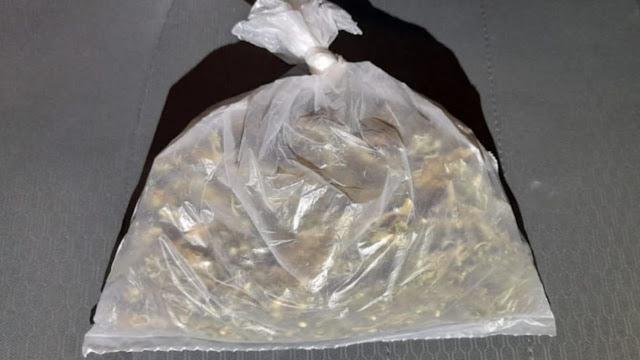 En Uruapan, detiene SSP a uno en posesión de marihuana