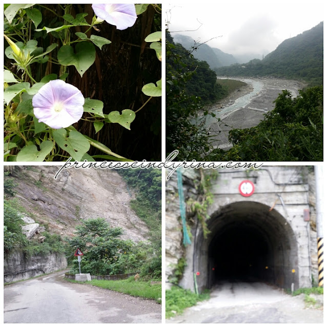 flower, roads and tunnel
