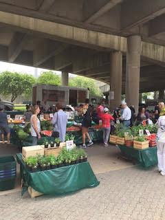 Roosevelt Island Farmers Market Open Every Saturday Rain Or Shine