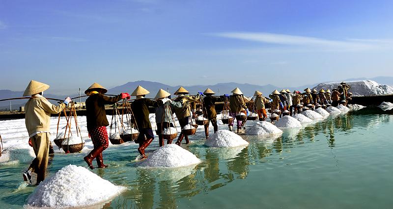 nông dân làm muối ở Bình Thuận