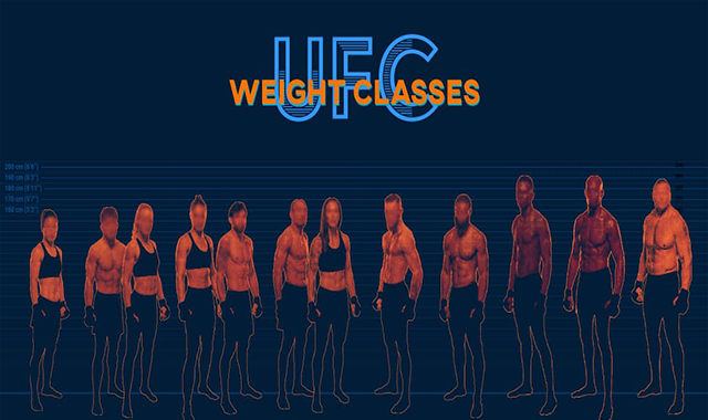 Ultimate Guide to UFC Weight Classes