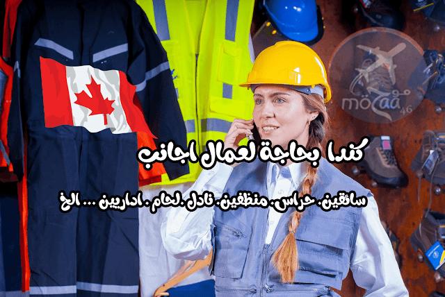 مطلوب مئات العمال في كندا لمختلف الفئات 2019