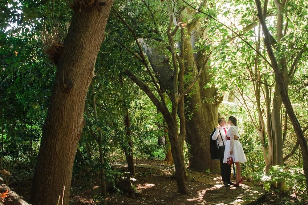 DK Photography CCD_1465 Maegan & Jarrad's  Wedding in The Cellars-Hohenort Hotel , Constantia Valley