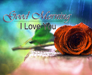 Beautiful-Good-Morning-4k-Images-Download-For-GF-Frien