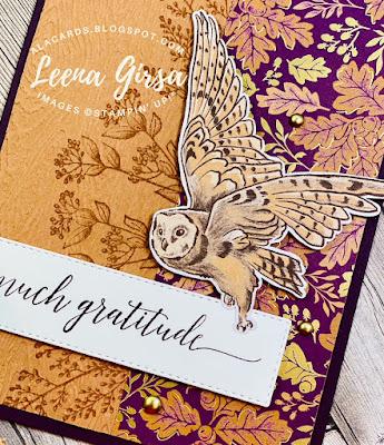 fall owl card