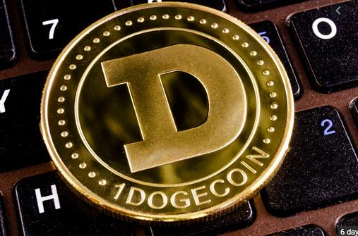 World Richest Man, Elon Musk Endorses Dogecoin