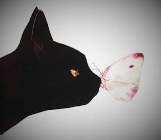 Jolie photo d'un chat et papillon