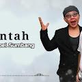 Lirik Lagu Runtah - Sule feat Doel Sumbang