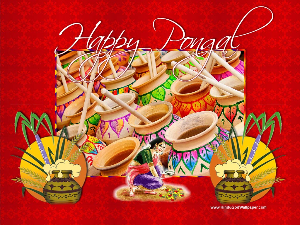 Happy Pongal 2013  Pongal Greetings
