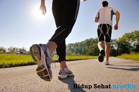 10 Blog / Situs Kesehatan Terbaik [ Artikel, Obat, Makanan & Cara Hidup Sehat ]