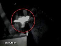 Sosok Peri Diklaim Terekam Kamera CCTV