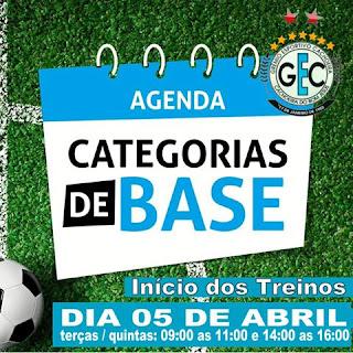 Agenda categorias de base