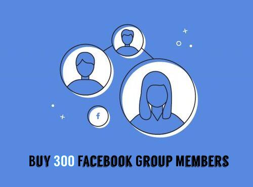 Buy 300 Facebook Group Members