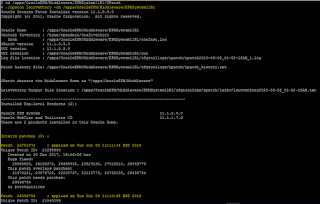 Shell script to extract Oracle Hyperion patches currently applied