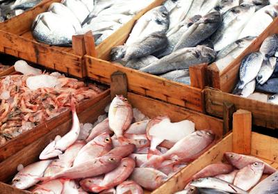 Elegir el mejor pescado