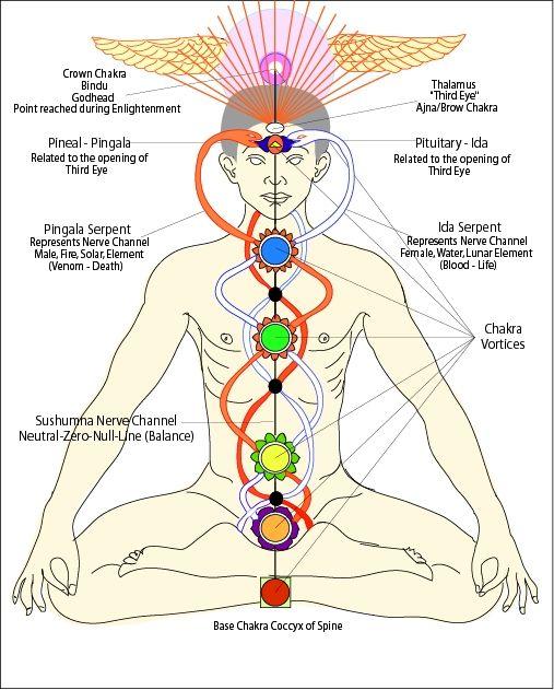 Kundalini Yoga - Principles, Kriyas and Practices
