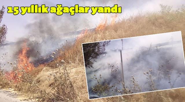 Karaköprü'de anız yangını
