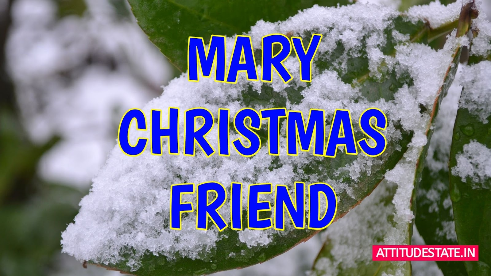 Best Merry Christmas Images