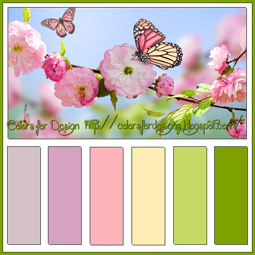 Colors For Designs: 055