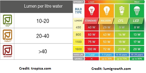 Calculate Lumen/Wattage For Planted Tank
