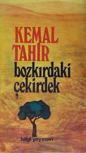 Kemal Tahir - Bozkırdaki Çekirdek PDF İndir