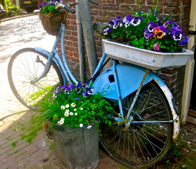 Bicycles aren't just for riding in Amsterdam | Ms. Toody Goo Shoes
