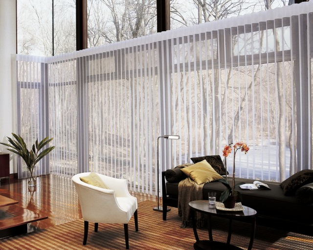 WINDOW Covering for Sliding GLASS Doors Ideas Pictures