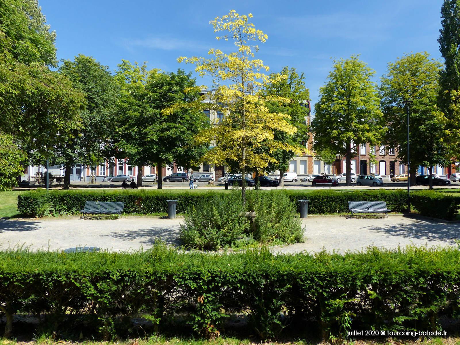 Arbre de la Liberté, Tourcoing 2020