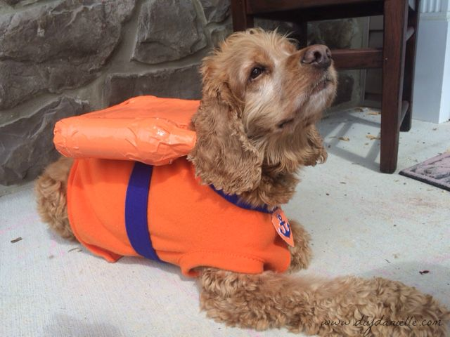 Halloween costume for the dog zuma from paw patrol diy danielle how to sew a zuma paw patrol dog costume my son is trick solutioingenieria Image collections